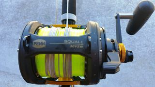 Penn Squall 30 VSW 2 Speed New