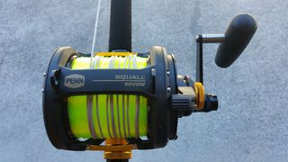 Penn Squall 50 VSW 2 Speed